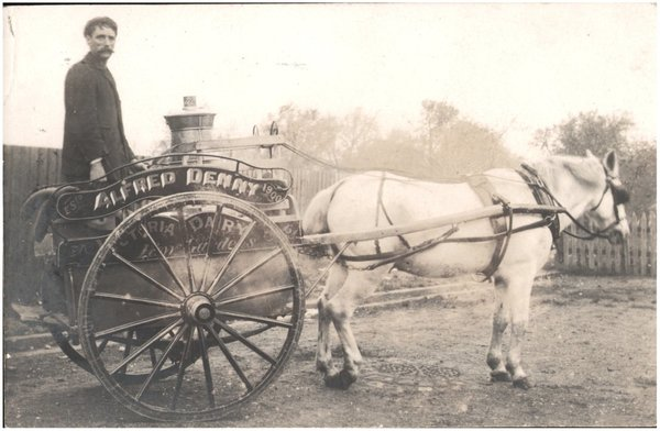 Milkman_and_horse-drawn_cart_-_Alfred_Denny__Victoria_Dairy__Kew_Gardens__Est_1900__6154024664_