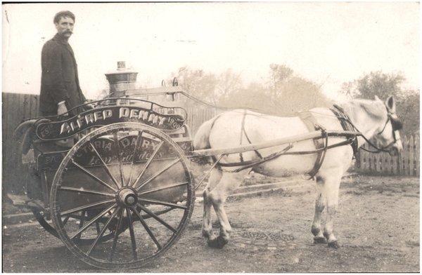 Milkman_and_horse-drawn_cart_-_Alfred_Denny__Victoria_Dairy__Kew_Gardens__Est_1900__6154024664_