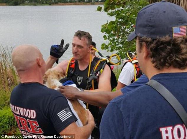 Davie Fire Rescue Dept