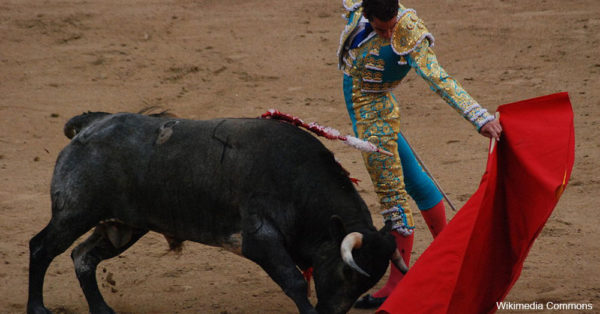 bullfighters1