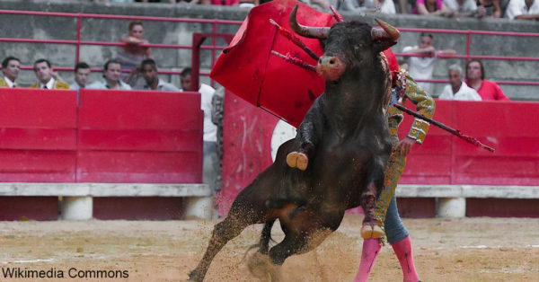 bullfighters4