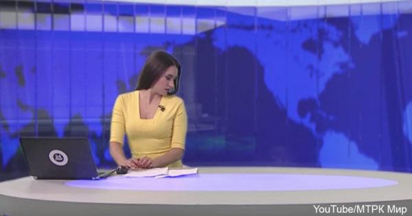 dog-news1