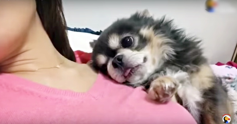 snuggle1