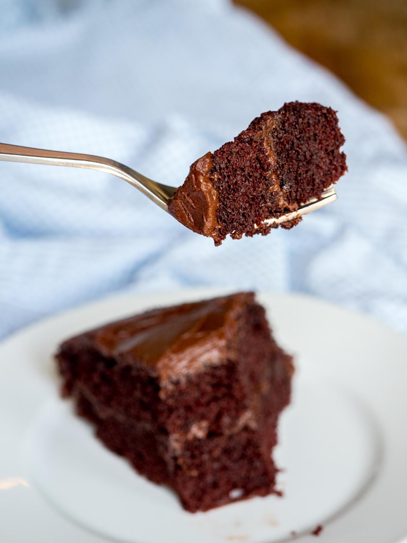 Depression Era Chocolate Cake Vertical 1