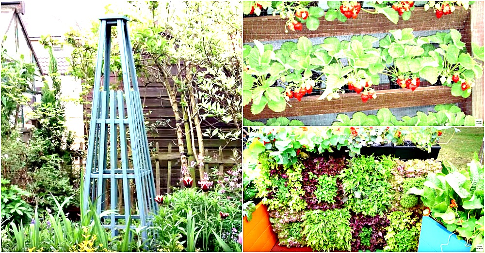 grow-more-vertical-garden-2