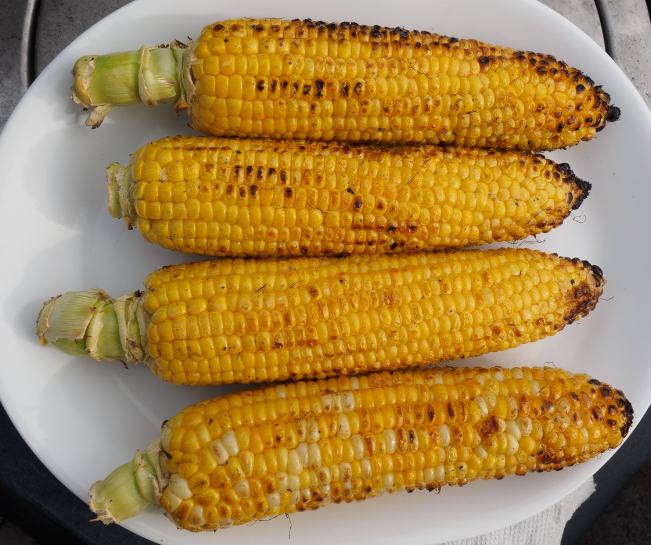 Corn on the cob grilled on the barbecue, laid out on a white plate