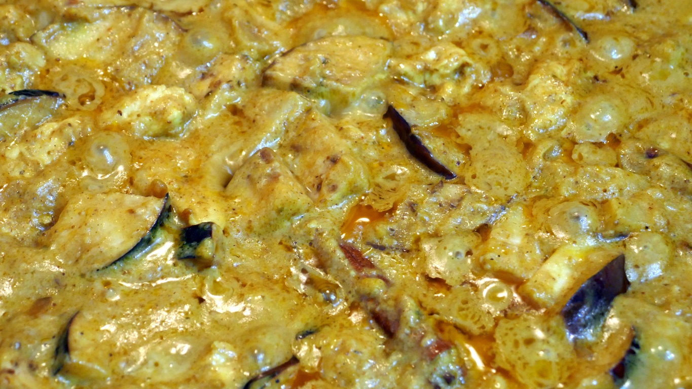 Chicken and Eggplant Korma