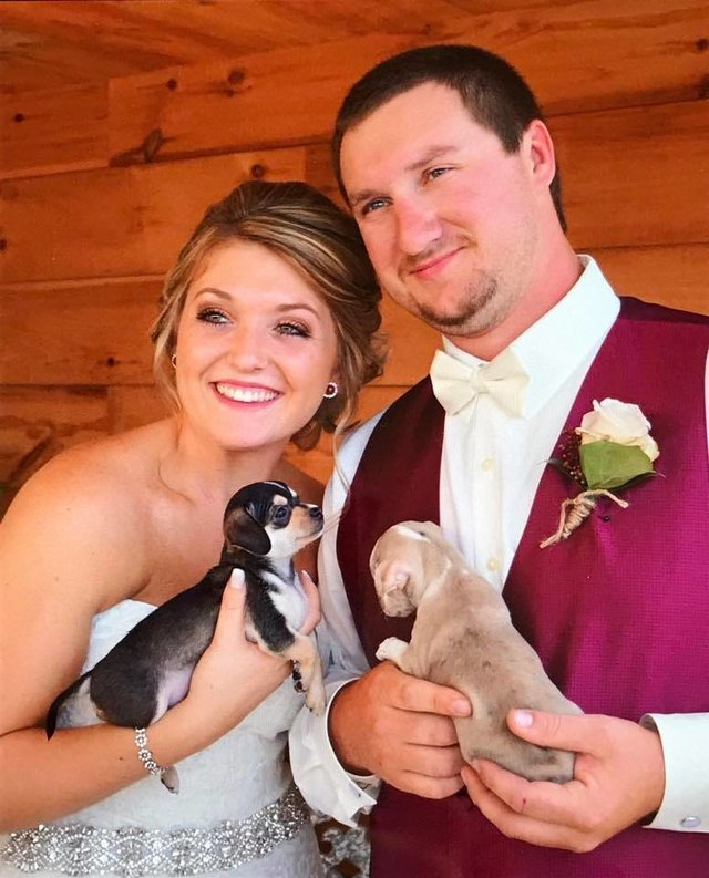 Bridesmaids Ditch The Flowers And Carry Rescue Puppies Down