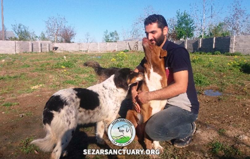 sezar sanctuary