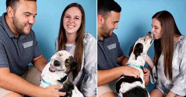 Source: Facebook/SPCA of Texas  Henderson and Roman with KD.