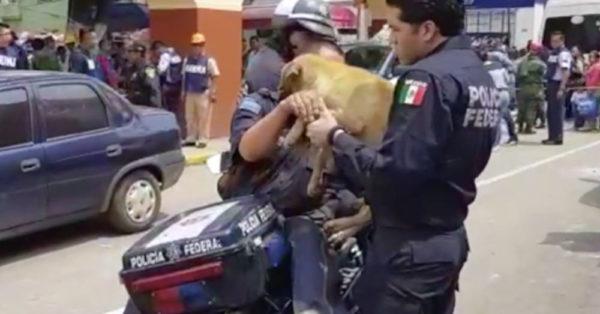 Source: Facebook/Policía Federal de México
