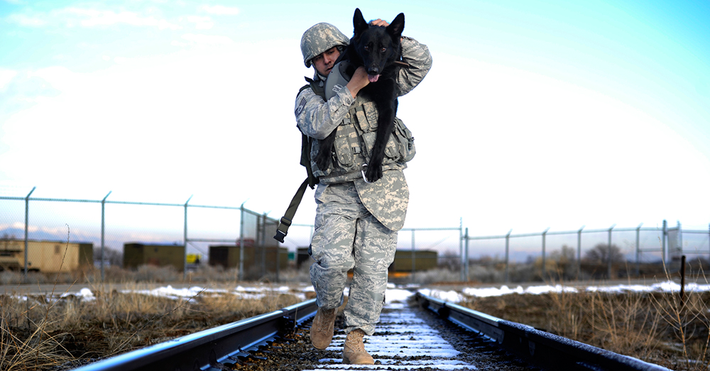 Photo: U.S. Air Force/Airman 1st Class Allen Stokes -- Staff Sgt. Erick Martinez, a military dog handler, uses an over-the-shoulder carry with his dog Argo II.