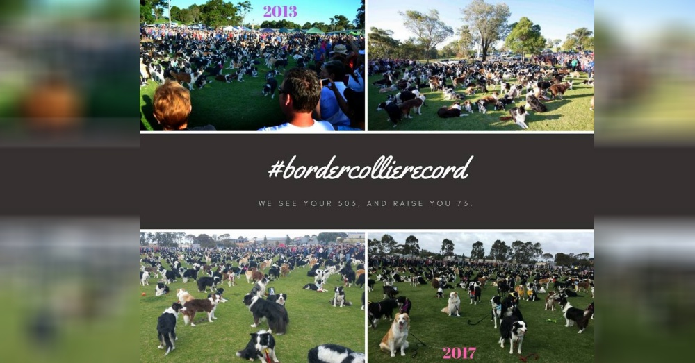 Photo:Facebook/BCOSA World Record Attempt