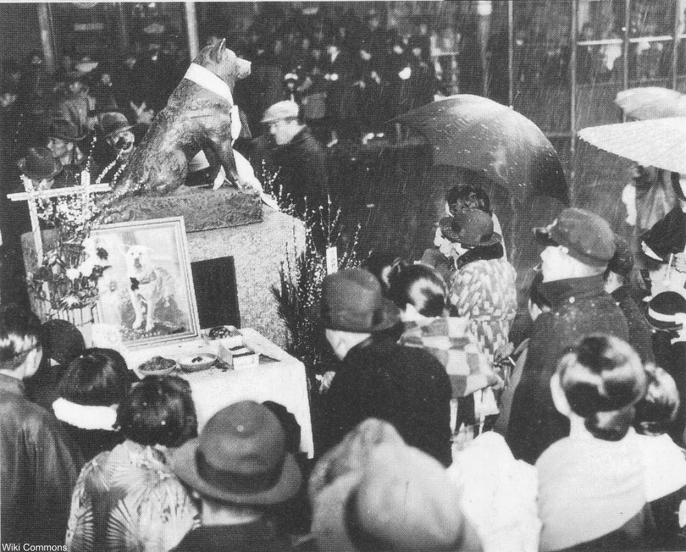 Hachikō, the dog who waited for his owner at a train station for 9 yearsThe Story of Hachikō, the Most Faithful Dog in the World
