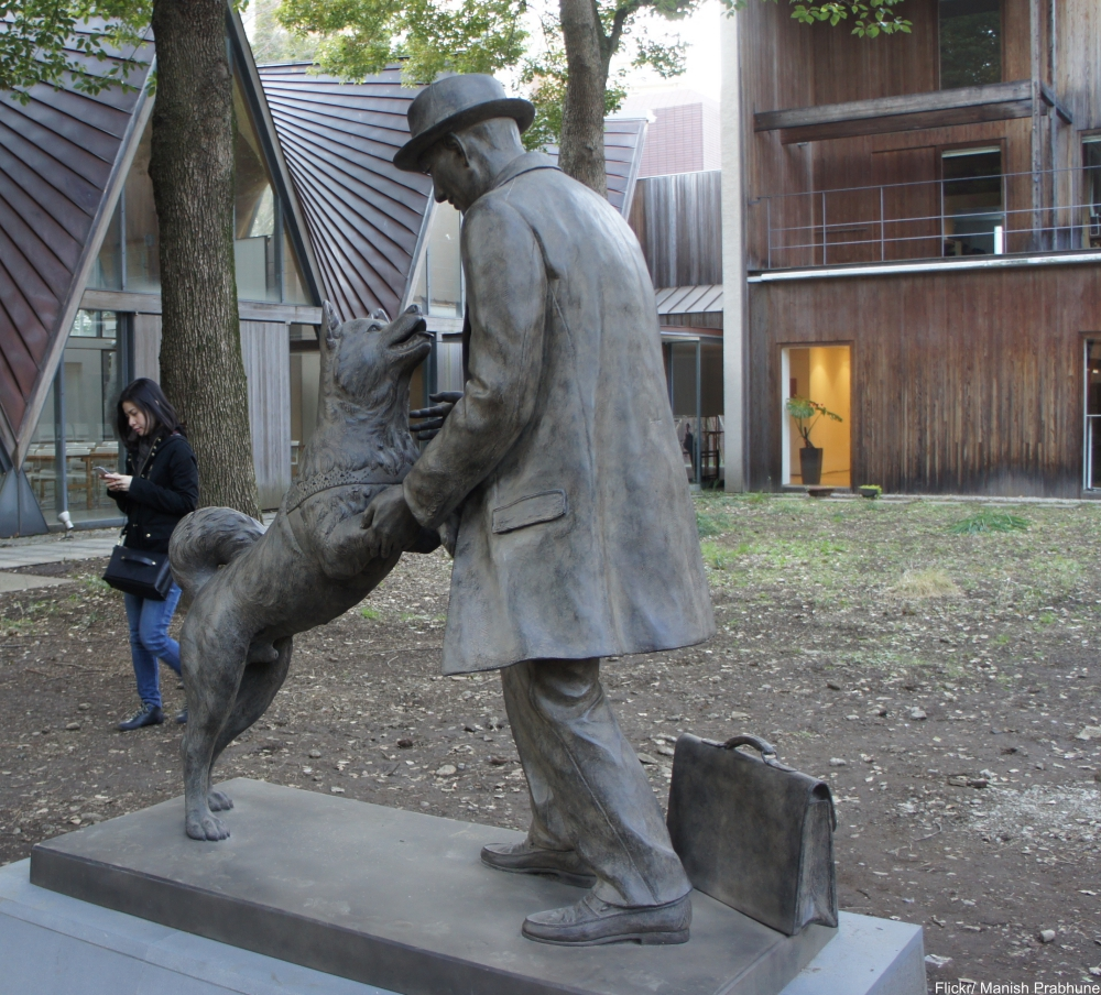 The Story of Hachikō, the Most Faithful Dog in the World