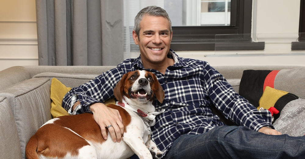 Photo: Purina & Andy Cohen