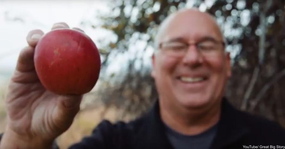 detective seeks lost apple cultivars