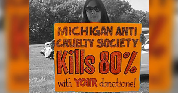 Source: Facebook/Demanding Change at Michigan Anti Cruelty Society
