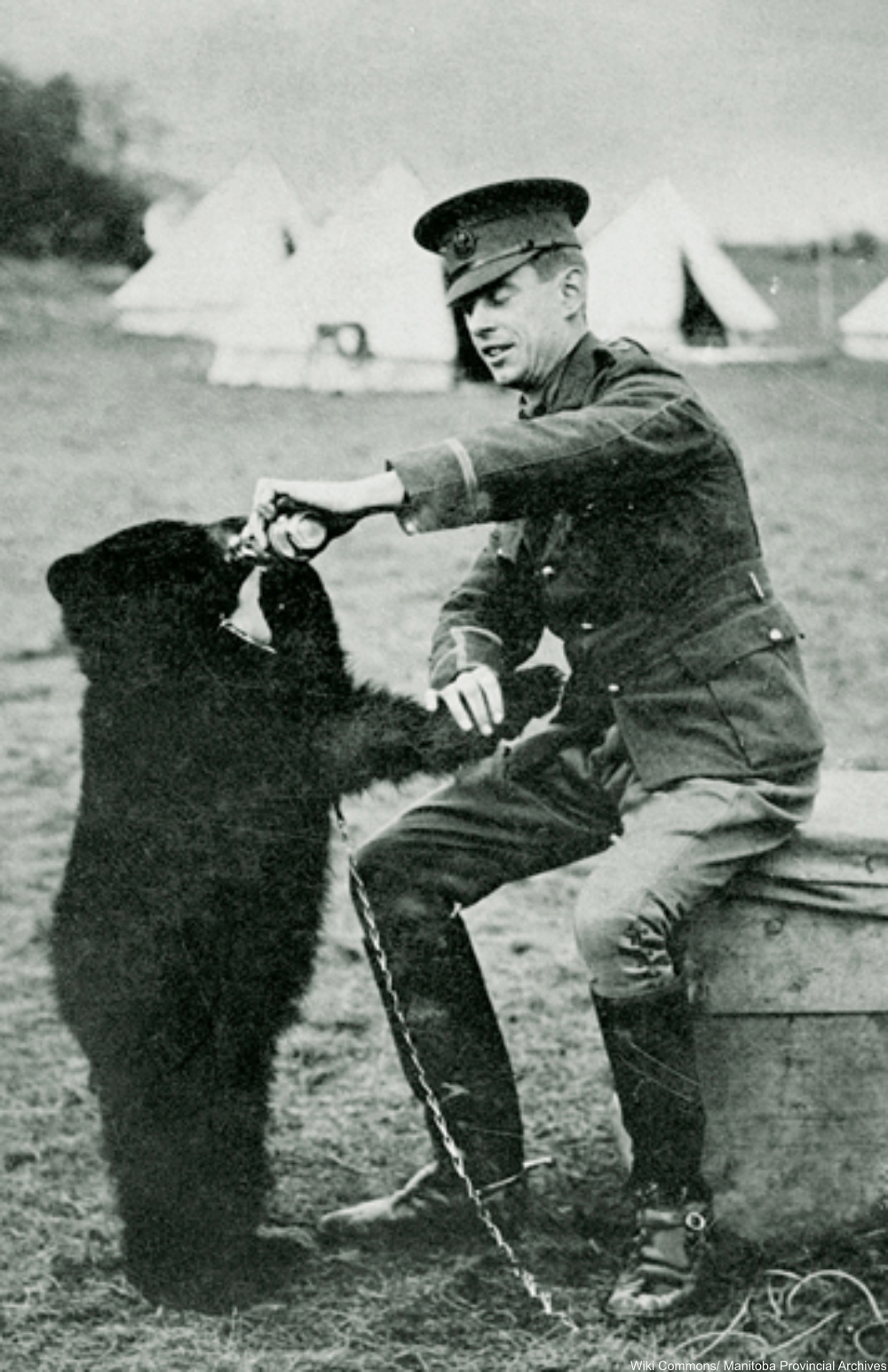 Winnie, the actual bear for which the toy was named