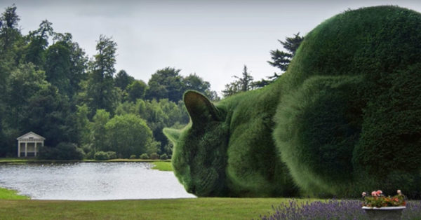 Source: YouTube/The Topiary Cat