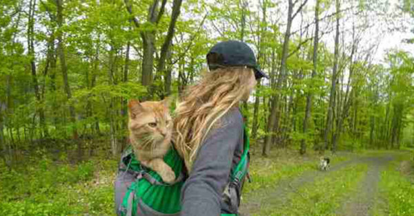 Source: Facebook/Amber Rose Pitcher Amber Pitcher wears a special backpack to carry Ollie while hiking.