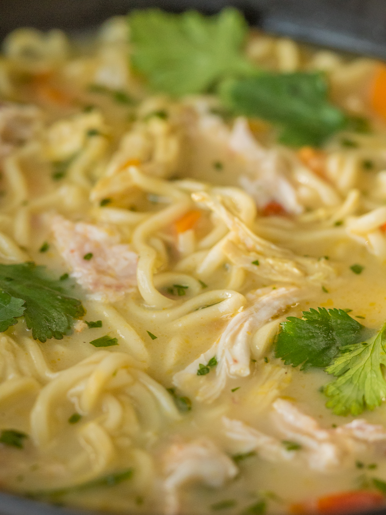 Asian Chicken Noodle Soup Vertical 1