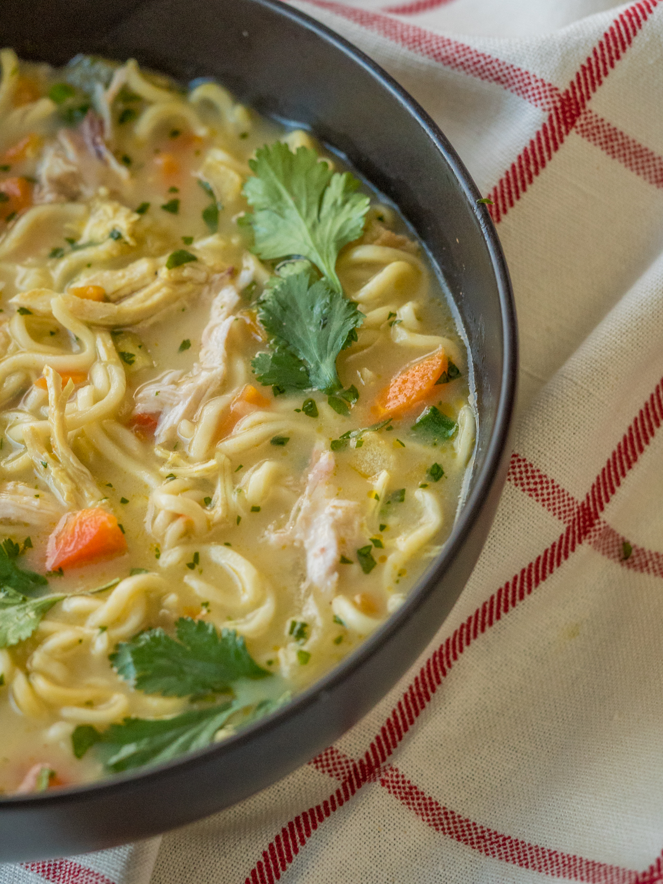Asian Chicken Noodle Soup Vertical 3