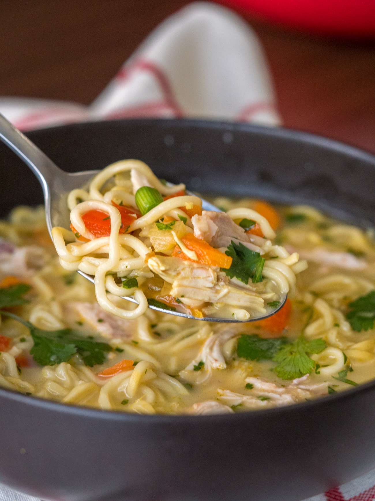 Asian Chicken Noodle Soup Vertical 5