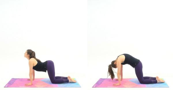 5-minute-yoga-cat-cow
