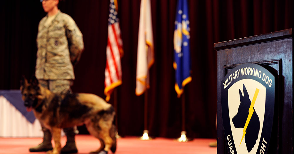 Source: U.S. Air Force Military Working Dogs have played an important role in nearly every conflict our service members have been involved in.
