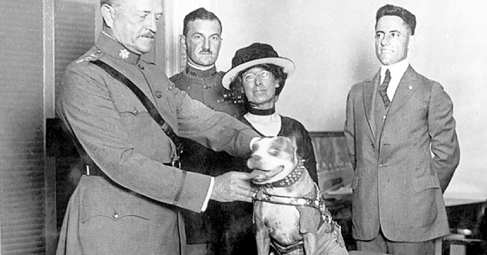 Source: Wikimedia Commons General John J. Pershing awards Sergeant Stubby with a medal in 1921.