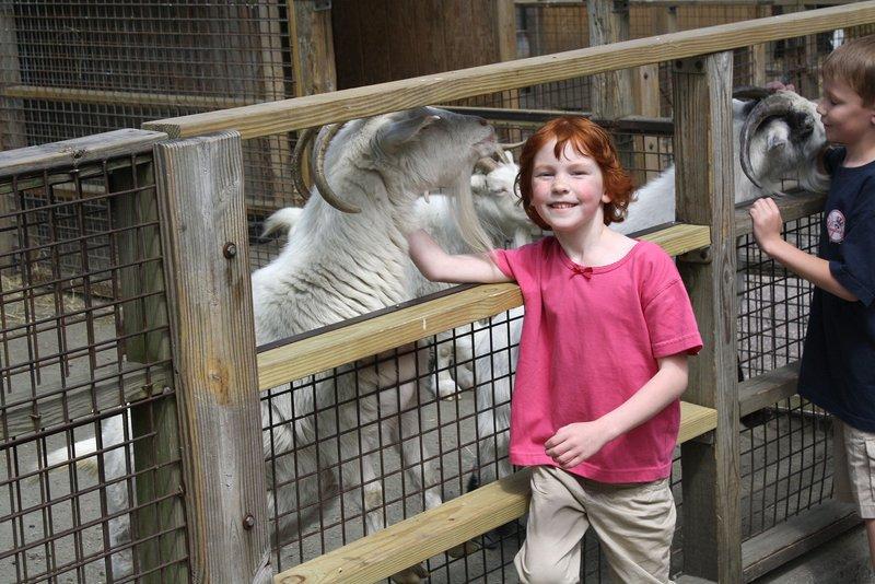 Catherine Violet Hubbard Animal Sanctuary