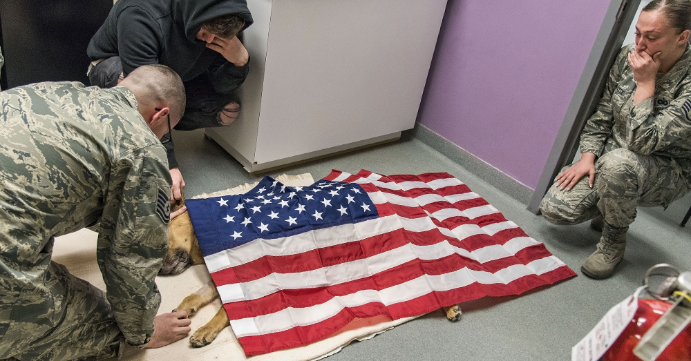 U.S. Air Force/Roland Balik -- Tech. Sgt. Matthew Salter, retired Tech. Sgt. Jason Spangenberg and Staff Sgt. Ashley Beattie grieve over the U.S. flag-draped body of MWD Rico.