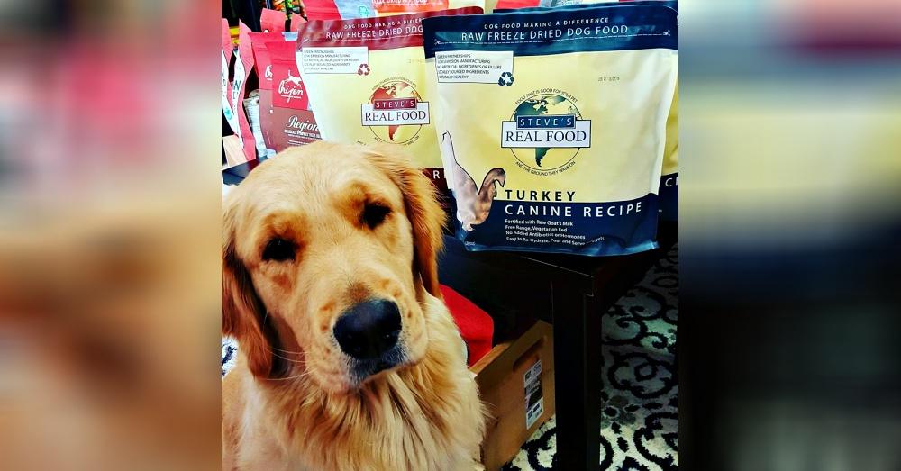 Photo:Facebook/Golden Paws Pet Boutique & Grooming Salon