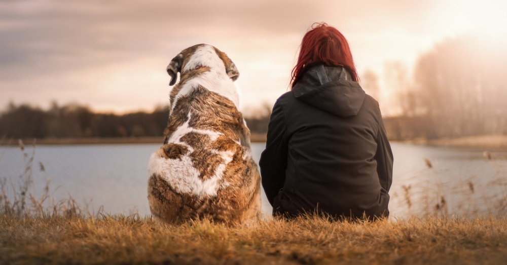 Dog and Human sitting on river bank