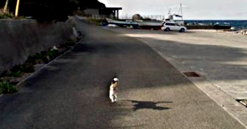 Photo: Google Street View