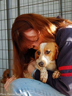 Bryna Donnelly cuddling an adorable beagle in a kennel