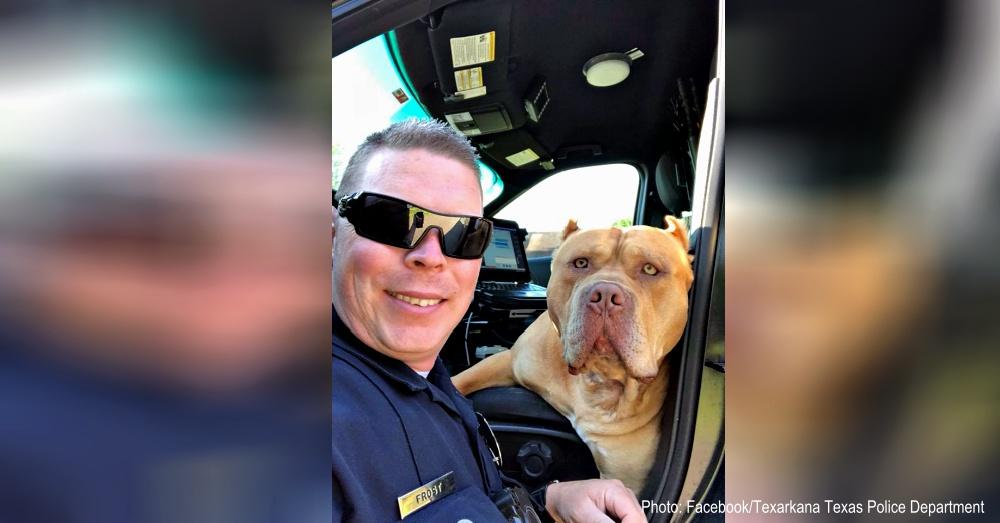 gold-police-selfie-1