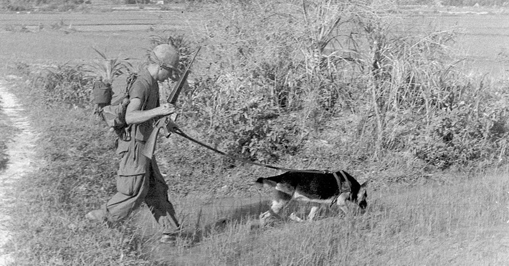 Source: Wikimedia Commons SP4 Bealock and scout dog