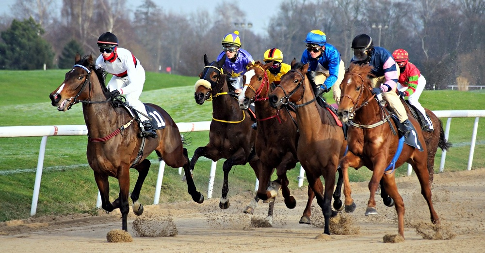 horse-racing-reality-1