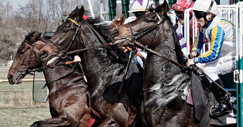 horse-racing-reality-2