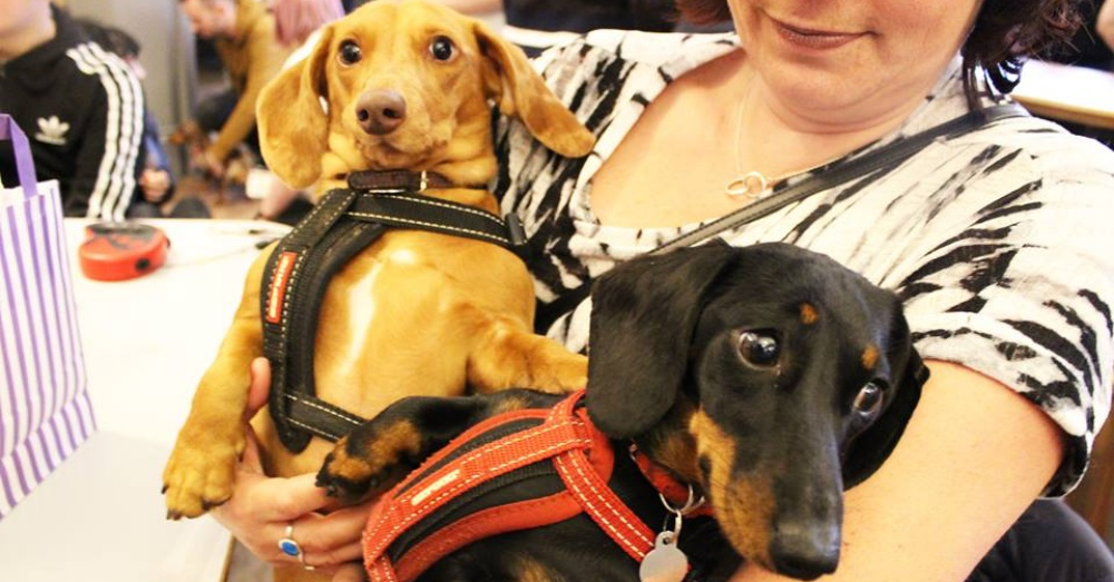 Photo: Facebook/ Dachshund Cafe