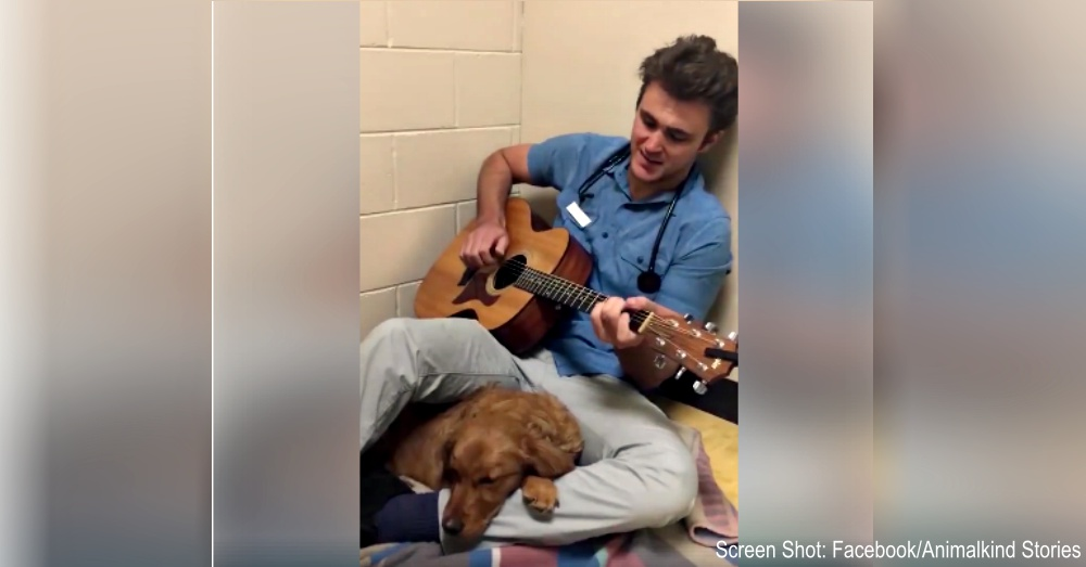vet-sings-to-puppy-1