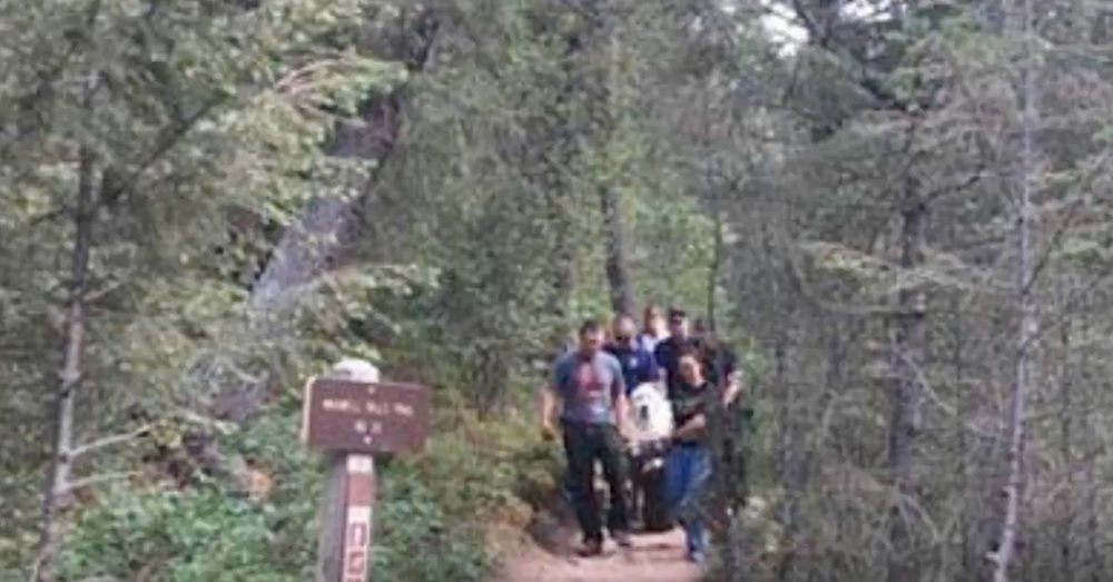 Source: YouTube/News Channel Kato became exhausted on a hike in Evergreen, Colo.