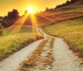 path-at-sunrise