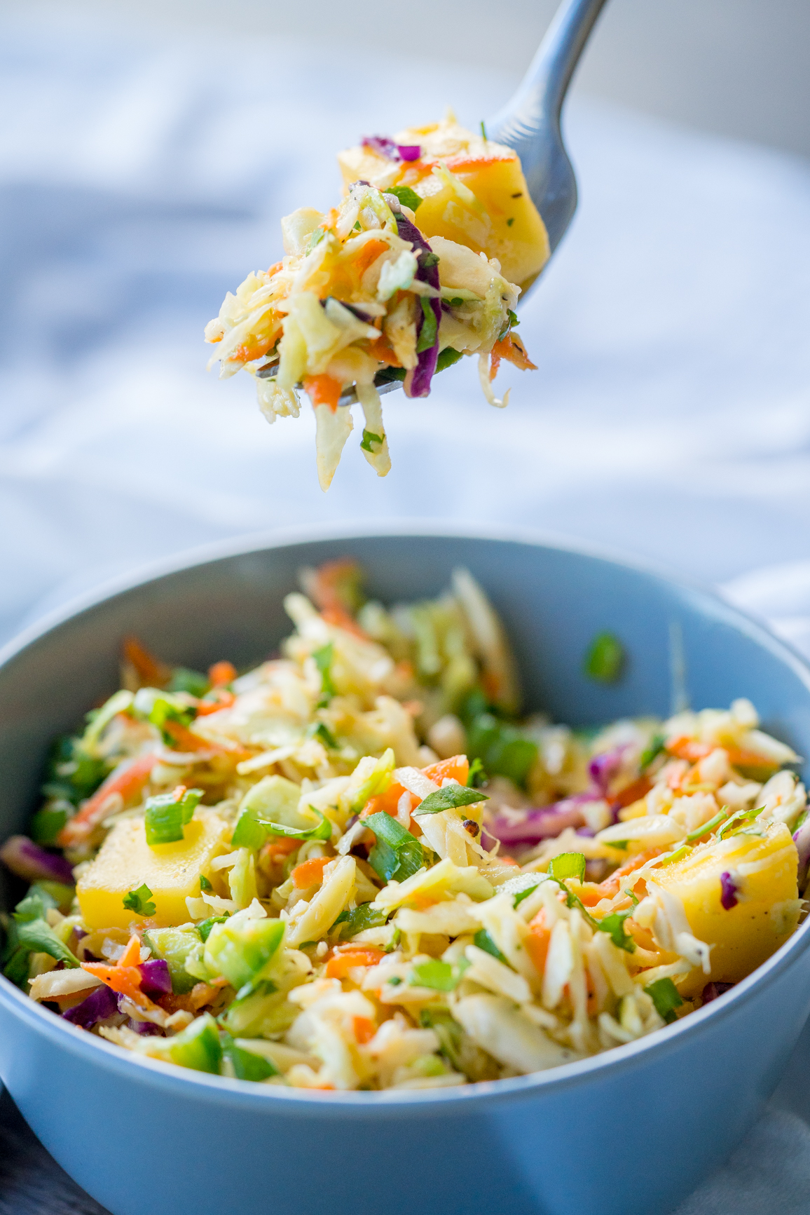 Carribean Coleslaw 12