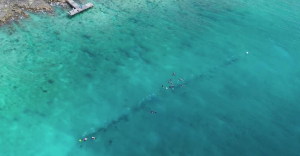Photo: Cayman 27