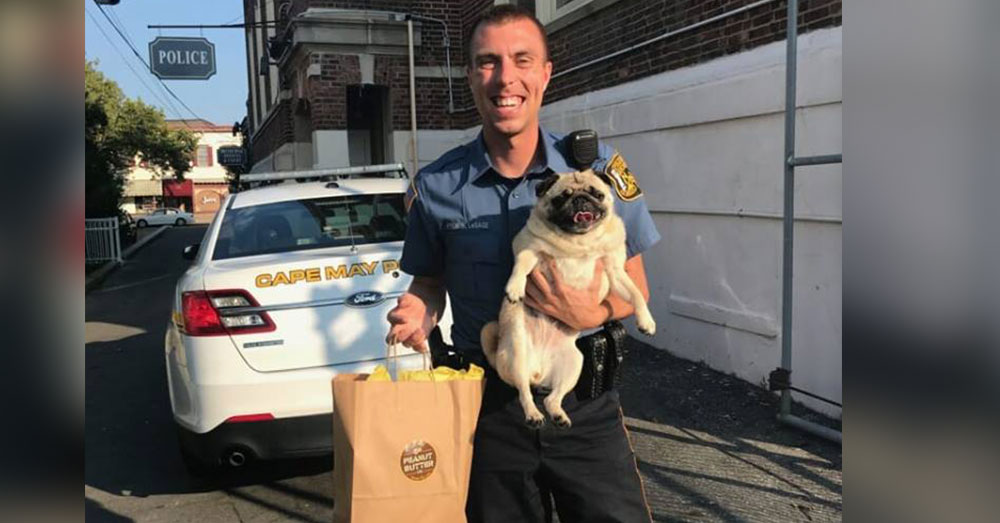 Source: Facebook/Cape May Police Departmenbt Bean's bail was paid in cookies!
