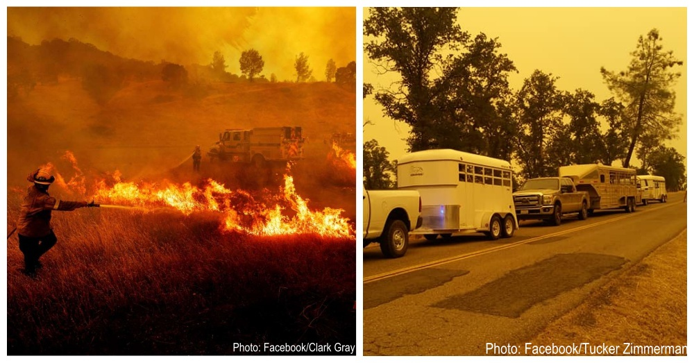 carr-fire-rescues-1