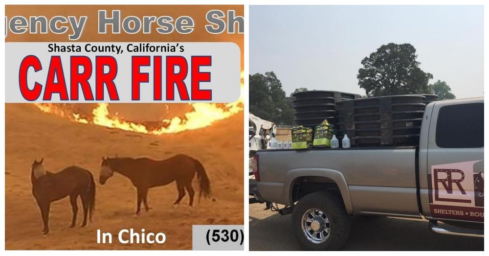 Photos:Facebook/Cowboy 911